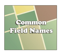 common field names